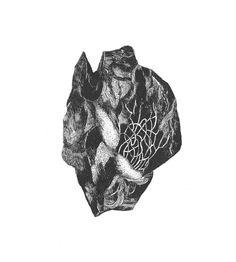 dessin contemporain – olivier umecker, format A4 – 2017