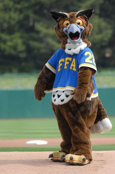 Introducing... Flyte the Owl! http://nationalffa.wordpress.com/2012/10/23/introducing-flyte-the-new-ffa-mascot/    @FlytetheOwl