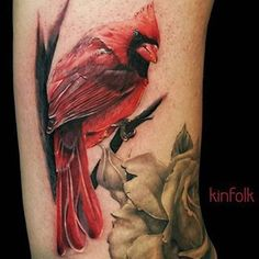 What does cardinal tattoo mean? We have cardinal tattoo ideas, designs, symbolism and we explain the meaning behind the tattoo. Cardinal Bird Tattoos, Red Bird Tattoos, Animal Tattoos, Flower Tattoos, Cardinal Birds, Feather Tattoos, Daddy Tattoos, Sweet Tattoos, Future Tattoos