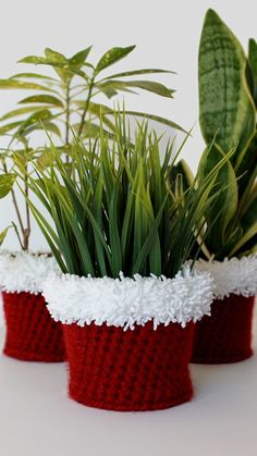 Crochet Holiday Planter Cover Pattern -- great gift! - THIS IS JUST TOO CUTE! A