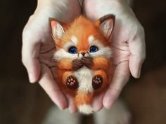 How Artist Decided To Draw Pet And What Happened Next Cute Wild Animals, Baby Animals Super Cute, Cute Baby Dogs, Baby Animals Pictures, Cute Stuffed Animals, Cute Animal Photos, Cute Animal Drawings, Cute Little Animals, Cute Funny Animals