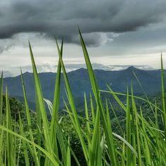 Aizawl in Mizoram