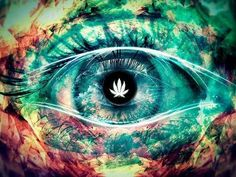 Check out this Dank website with some Dope Cannabis related merchandise.