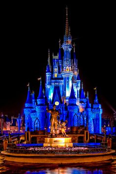 Cinderella Castle by -Jamian-, via Flickr