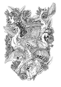 Fineliner: The Six Swans