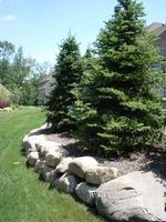 Aspen Outdoor Designs, Inc - Landscape Design, Installation & Maintenance - Noblesville, Indiana - Retaining Walls
