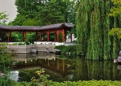 Jardines Chinos - Taringa!