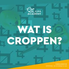 Fotografietips: Wat is croppen? Photography Guide, Photography Projects, Amazing Photography, Nature Photography, Lightroom, Photoshop, Photo Maker, Martin Parr, Photo Tips