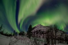 If you ask 20 random people about the top spot on their travel bucket list, you will probably get at least 10 identical answers: seeing the Northern Lights. See The Northern Lights, Aurora Borealis, Mystic, At Least, World, Lime, Bucket, Travel, Search
