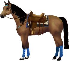 Design your own horse and dress it up with different pieces of western tack to see what colour looks best. Read the instructions at the top of the page before starting. This picture is just a sample of what you can create. Lots more horsemakers to try too: english, showmanship, show colours, etc.