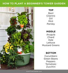 Beginner Tower Garden planting plan