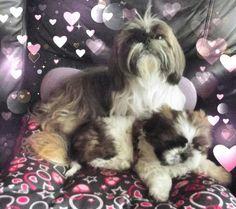 Sophie y su bello bb Lucah, mis dos amores. .....