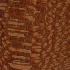 Leopardwood (sealed)
