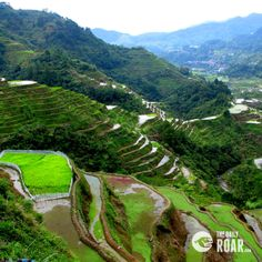 Banaue Rice Terraces #philippines #mountain #beauty #nature #culture #travel #rice #fields