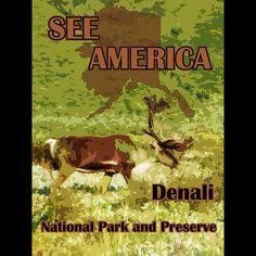 Denali National Park and Preserve 2 by Eitan S. Kaplan  #SeeAmerica
