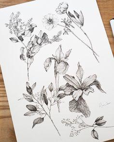 flowers    #flowertattoo #tattoodesign #tattoo #hongdam #타투 #홍담