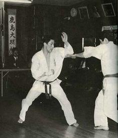 Ashi te karate do pepe opinion