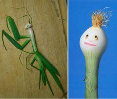 grasshopper made with onion leaf
