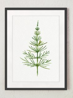 Horsetail Watercolor Painting Equisetum Green Living Room