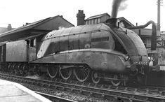 Diesel, Steam Trains Uk, Union Pacific Train, Herring Gull, Flying Scotsman, Steam Railway, British Rail, Steam Engine, Steam Locomotive