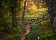 Walk Your Path. No one saves us but ourselves. We ourselves must walk the path. Gautama Buddha Path along Big Creek near Amis Mill Landscape Photos, Landscape Photography, Travel Photography, Photos Of The Week, Wonderful Places, Places To See, Paths, Tourism, Around The Worlds