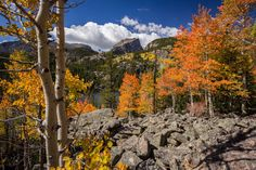 Autumn at Bear Lake - taken during a mid-September hike in Rocky Mountain National Park Colorado USA [OC][2048x1365]