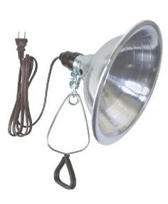 Woods 0151 18/2-Gauge SPT-2 Clamp Lamp with Reflector, 8.5-Inch, 150-Watt, 6-Foot  Order at http://www.amazon.com/Woods-0151-Reflector-8-5-Inch-150-Watt/dp/B000HHQ94C/ref=zg_bs_1259929011_55?tag=bestmacros-20
