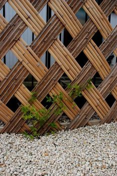 Delicate Backyard Fencing Metal Ideas 7 Astounding Cool Tips: Natural Fence Garden metal fence g Bamboo Wall, Bamboo Fence, Metal Fence, Bamboo Fencing Ideas, Bamboo Garden Ideas, Bamboo Ideas, Trellis Fence, Brick Fence, Lattice Fence
