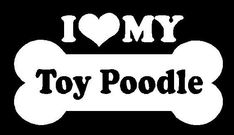 I Love My Toy Poodle...