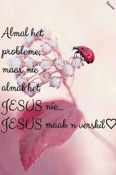 Jesus maak 'n verskil. Afrikaanse Quotes, Scripture Verses, Spiritual Inspiration, Trust God, Best Quotes, Nice Quotes, Wise Words, Prayers, Religion
