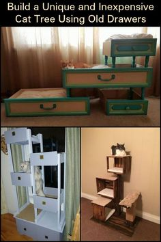 Why buy an expensive cat tree from the store when you can easily build one for a song? Why, you can use old drawers to make your DIY cat tree! Siberian Cats For Sale, Diy Cat Tree, Cat Trees, What Cats Can Eat, Tree Plan, Cat Hacks, Cat Diys, Old Drawers, Cat Drinking