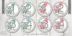 Twins Set of 24 Round Monthly Stickers Owls & Balloons in Aqua, Pink and Gray for Baby Boys and Girls Gifts Sets Photo Props Keepsakes by HeadsUpGirlsBaby, $20.00