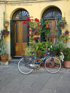 A Bike in Sienna  Italy  Blank 4x6 by KarensPhotoCreations on Etsy
