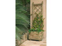Catral Garden, specialist in garden, cultivation and decoration Exterior, Organic, Outdoor Structures, Garden, Nature, Plants, Wooden Planter Boxes, Flower Pots, Naturaleza