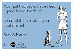 Your pet had babies? You need a good home for them? So do all the animals at your local shelter! Spay & Neuter.