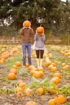 engagement photos- but with faces carved into the pumpkins!