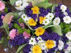 Flowers, St Catharines Market, Niagara Peninsula, Ontario