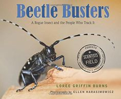 Multiple text structures, esp cause/effect. Beetle Busters (Scientists in the Field eries) by Loree Griffin Burns