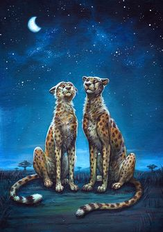 The last traditional piece I had in the EF artshow. just two cheetahs enjoying the warm night and watching the stars. Watching The Stars Big Cats Art, Furry Art, Cat Art, Cartoon Kunst, Cartoon Art, Fantasy Kunst, Fantasy Art, Anime Animals, Cute Animals