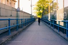 Take a walk on the wild side by romankphoto
