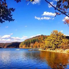 Fall looks good on Paintsville Lake State Park!  Photo by afowler2108  #kystateparks #kentucky #paintsvillelake #travelky