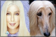10 Celebrities and The Animals They Look Like [Part 1]