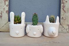 Animalitos al natural: Verde Cactus. Ceramic Pottery, Ceramic Art, Beginner Pottery, Cement Crafts, Succulents In Containers, Ceramic Planters, Clay Planter, Pinch Pots, Ceramic Animals