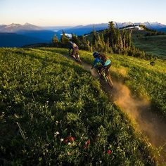 Revelstoke...Not to brag or anything, but we have some of the best Mountain Bike trails on the planet.