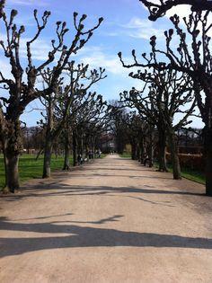 Kongens have, Copenhagen