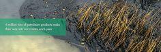 Big News! | Ian Somerhalder Foundation