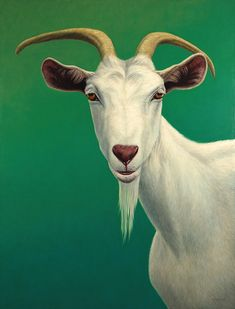 Goat Painting - Portrait Of A Goat by James W Johnson