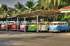 orange, red, green, white and blue Classic VW Bus'