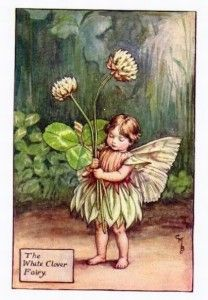 """Vintage print 'The White Clover Fairy' by Cicely Mary Barker from """"The Book of the Flower Fairies""""; Poem and Pictures by Cicely Mary Barker, Published by Blackie & Son Limited, London [Flower Fairies - Summer] Cicely Mary Barker, Elfen Fantasy, Fantasy Art, Flower Fairies, Clover Flower, Fairy Pictures, Vintage Fairies, Beautiful Fairies, Fantasy Illustration"""
