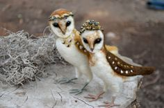 Needle felted Owls by Harthicune